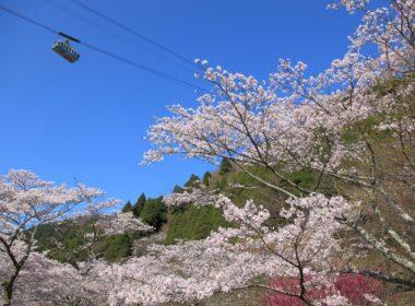 벳푸 로프웨이: 벳푸의 자연 경관과 풍경에서 느껴지는 놀라움