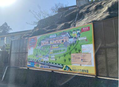 高崎山:日本野生獼猴天堂